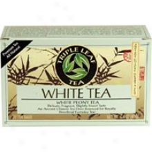 Triple Leaf White Tea 20bags