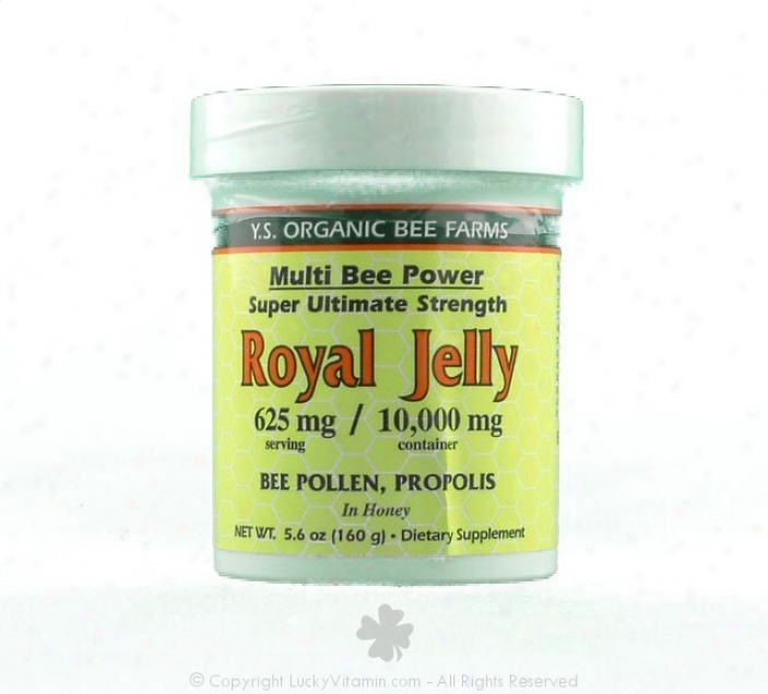 Y.s. Mulyi Bee Power Royal Jelly 20,000mg In Honey 11.5oz (610)