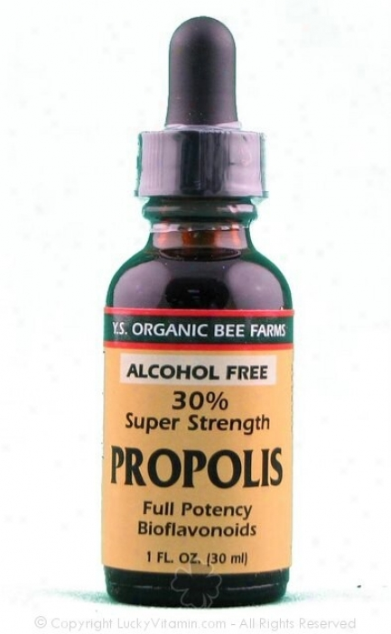 Y.s. Propolis 20%  None Alcohol 1oz (9l5)