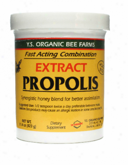 Y.s. Propolis Extract In Honey: 55,000mg 11.04oz (9f)