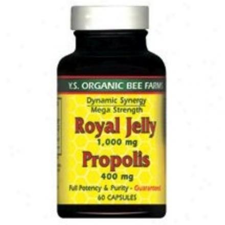 Y.s. Royal Jelly 1,000mg + Propolis 400mg 60caps (739)